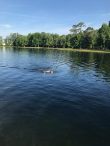 Swimming at Trophy Lakes for Half Ironman race