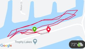 Half Ironman Swim Course